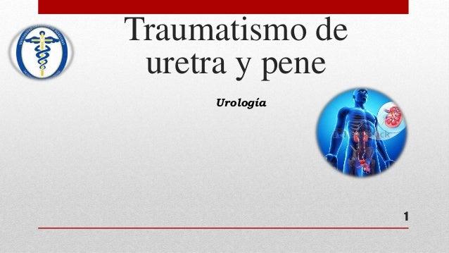 1 Urología Traumatismo de uretra y pene
