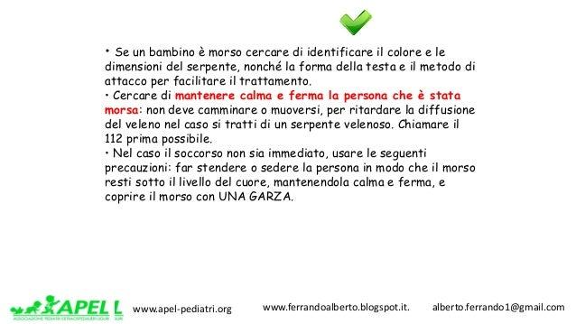 www.apel-pediatri.org www.ferrandoalberto.blogspot.it.alberto.ferrando1@gmail.com • Se un bambino è morso cercare...