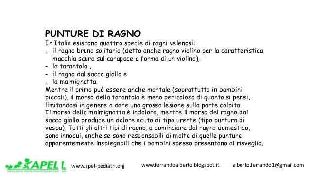 www.apel-pediatri.org www.ferrandoalberto.blogspot.it.alberto.ferrando1@gmail.com PUNTURE DI RAGNO In Italia esis...