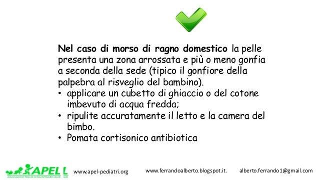 www.apel-pediatri.org www.ferrandoalberto.blogspot.it.alberto.ferrando1@gmail.com Nel caso di morso di ragno dome...