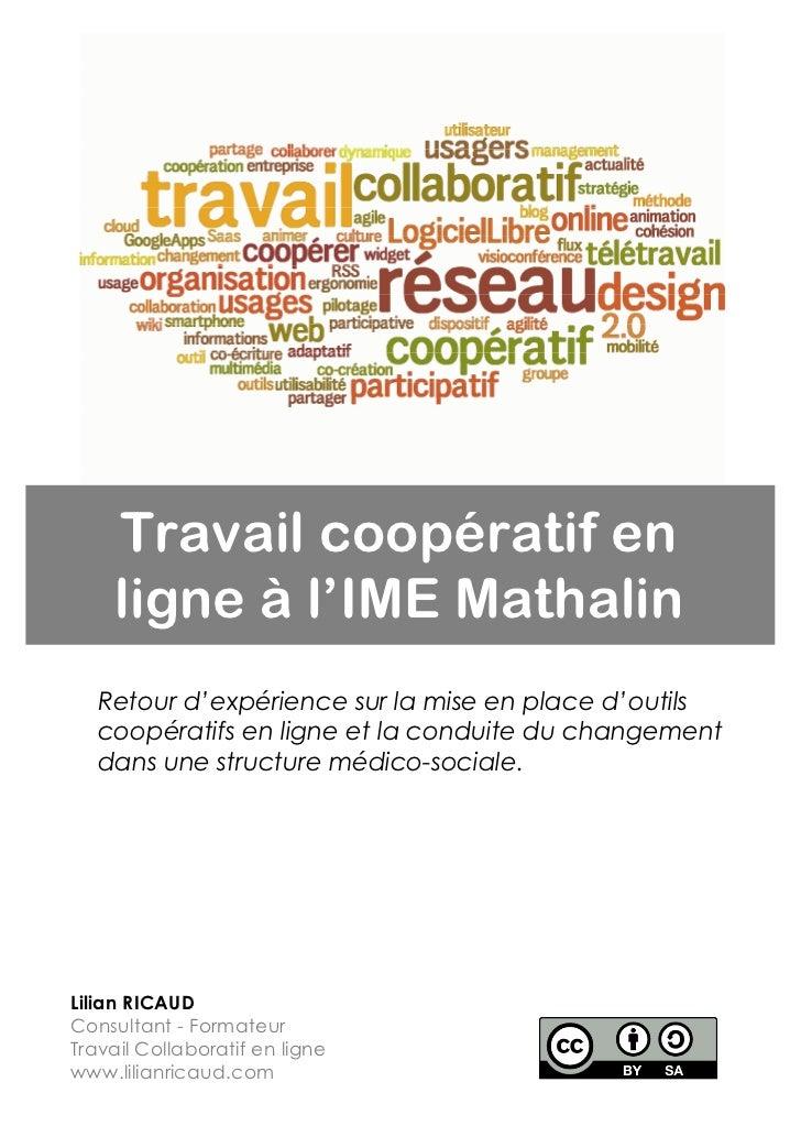 Travail coopératif en     ligne à l'IME Mathalin   Retour d'expérience sur la mise en place d'outils   coopératifs en lign...