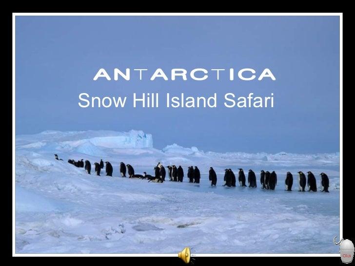 ANTARCTICA Snow Hill Island Safari