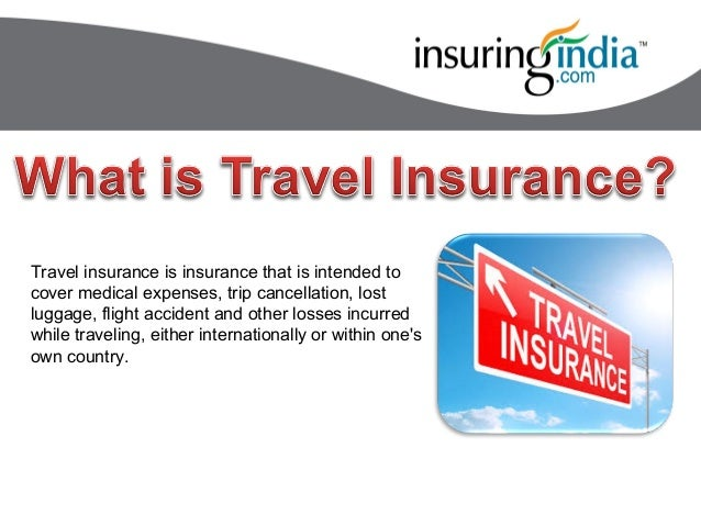Compare The Market Domestic Travel Insurance