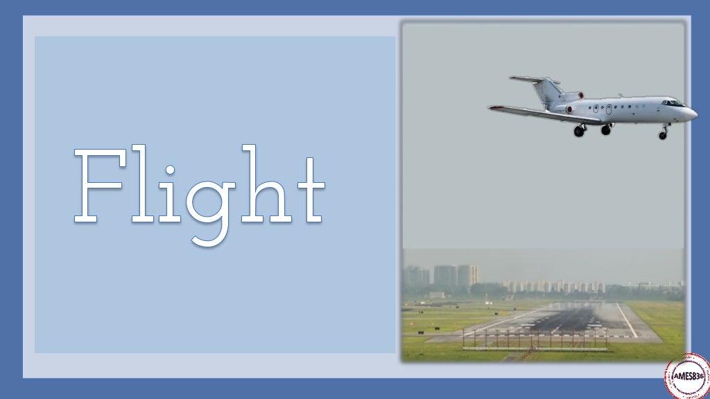 Travelling by plane: English Language page 26