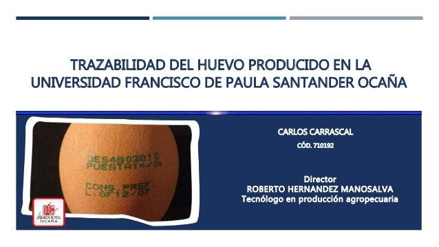 TRAZABILIDAD DEL HUEVO PRODUCIDO EN LA UNIVERSIDAD FRANCISCO DE PAULA SANTANDER OCAÑA CARLOS CARRASCAL CÓD. 710192 Directo...
