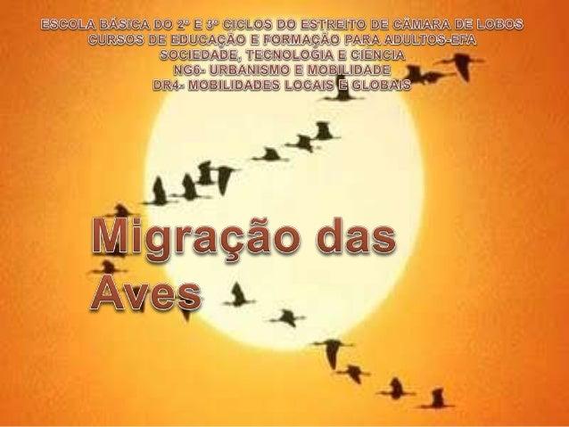  MIGRAÇÃO palavra derivada do latim MIGRARE (que significa ir de um lugar para outro). A migração ocorre quando uma popul...