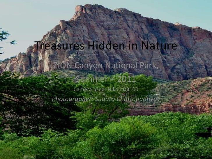 Treasures Hidden in Nature   ZION Canyon National Park,        Summer – 2011         Camera used: Nikon D3100   Photograph...