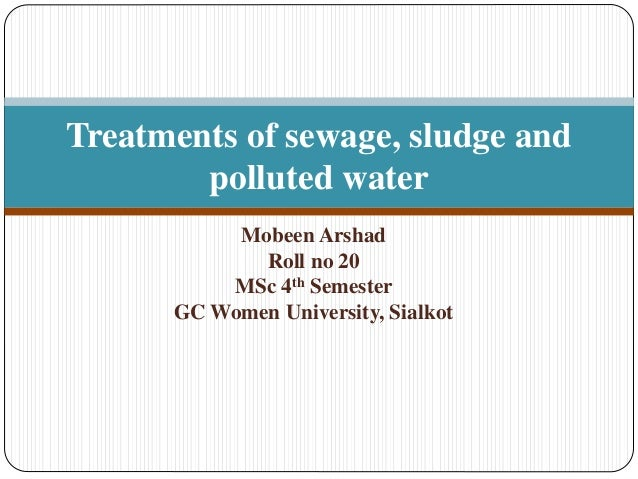 Treatments Of Sewage Sludge And Polluted Water