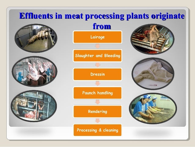 EFFLUENT=EFFLUENT=Potent pollutant sourceContent high amount of organic matter Solid (up to 10%) and semisolid form orga...