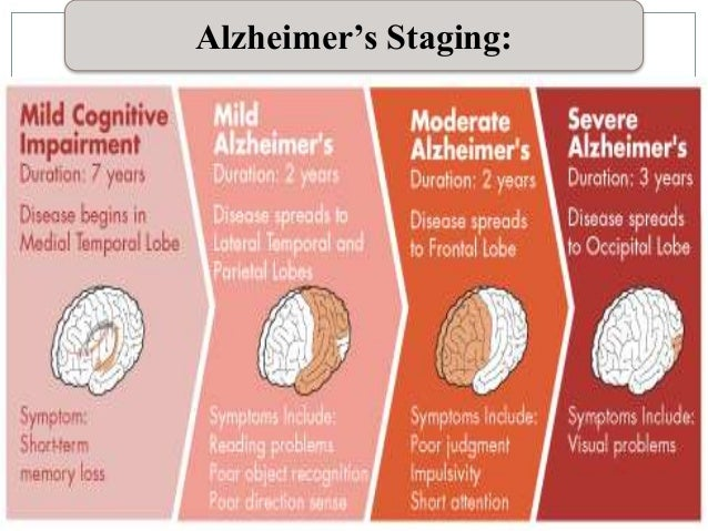 Medicine For Dementia >> Treatment Of Dementia