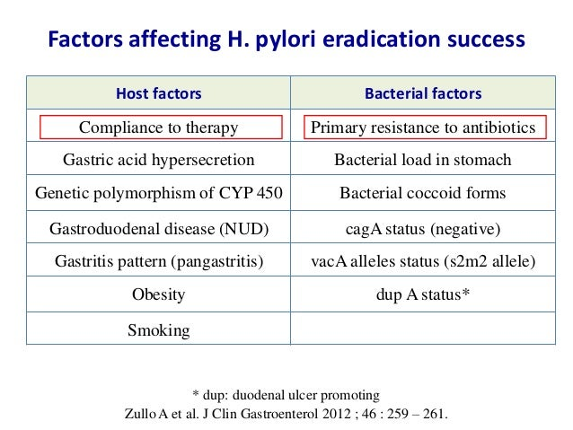 Treatment of Helicobacter pylori infection - Maastricht IV ...