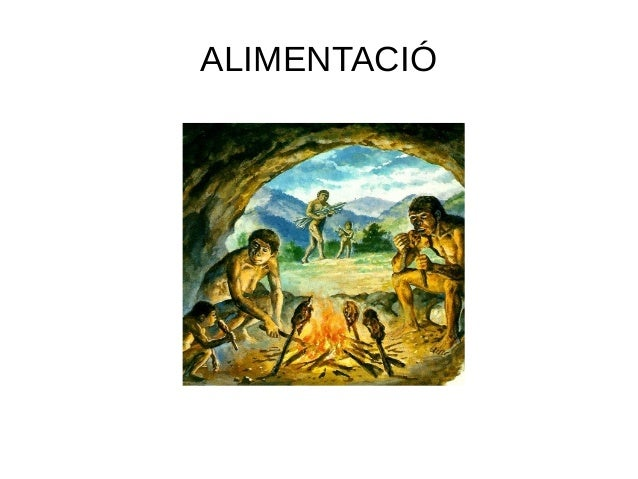 ALIMENTACIÓ