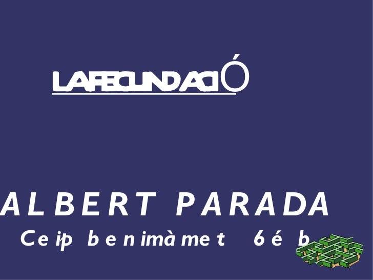 LA FECUNDACIÓ ALBERT PARADA Ceip benimàmet  6é b