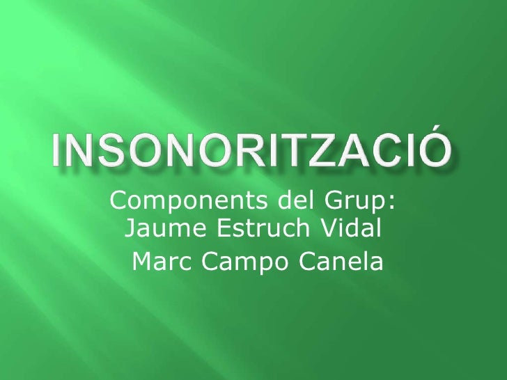 Components del Grup: Jaume Estruch Vidal  Marc Campo Canela