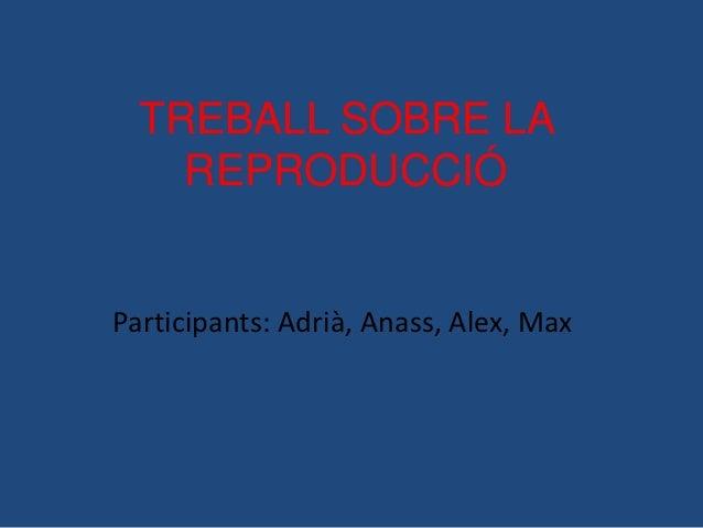 TREBALL SOBRE LA    REPRODUCCIÓParticipants: Adrià, Anass, Alex, Max