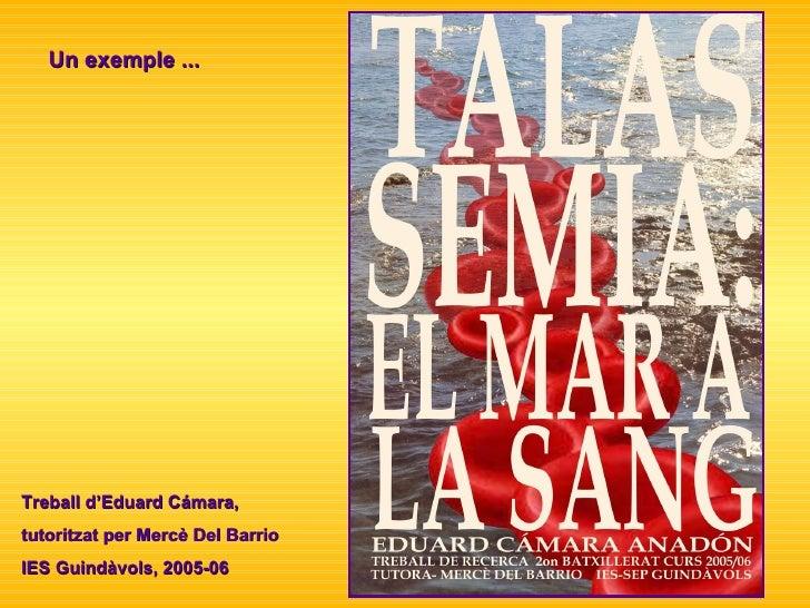 Un exemple ... Treball d'Eduard Cámara,  tutoritzat per Mercè Del Barrio  IES Guindàvols, 2005-06