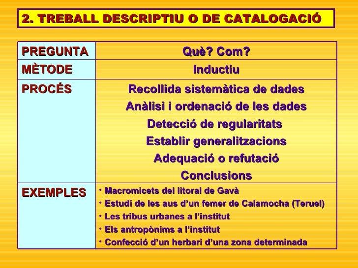 2. TREBALL DESCRIPTIU O DE CATALOGACIÓ <ul><li>Macromicets del litoral de Gavà </li></ul><ul><li>Estudi de les aus d'un fe...