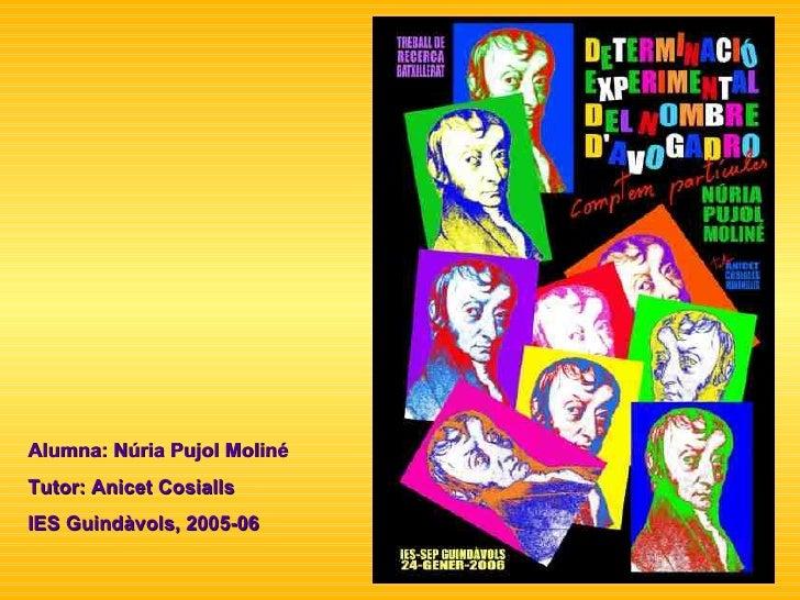 Alumna: Núria Pujol Moliné Tutor: Anicet Cosialls IES Guindàvols, 2005-06