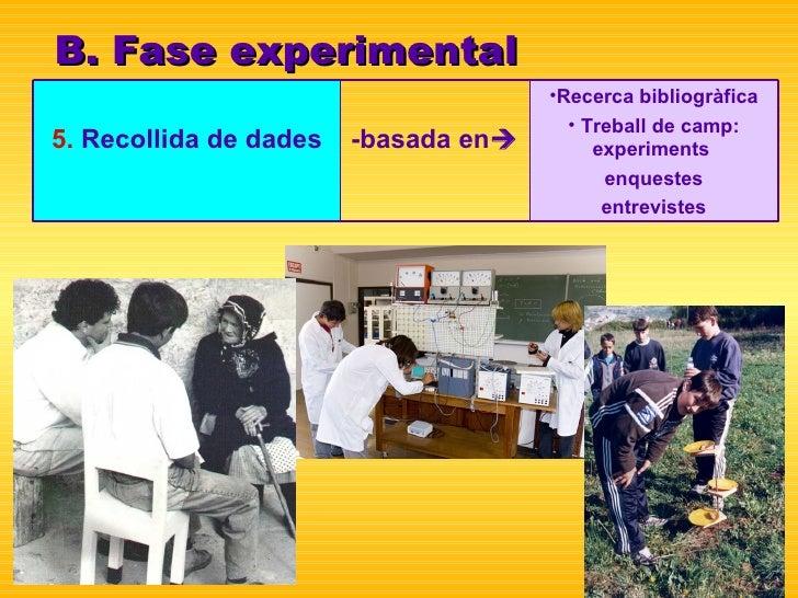 B. Fase experimental <ul><li>Recerca bibliogràfica </li></ul><ul><li>Treball de camp: experiments  </li></ul><ul><li>enque...