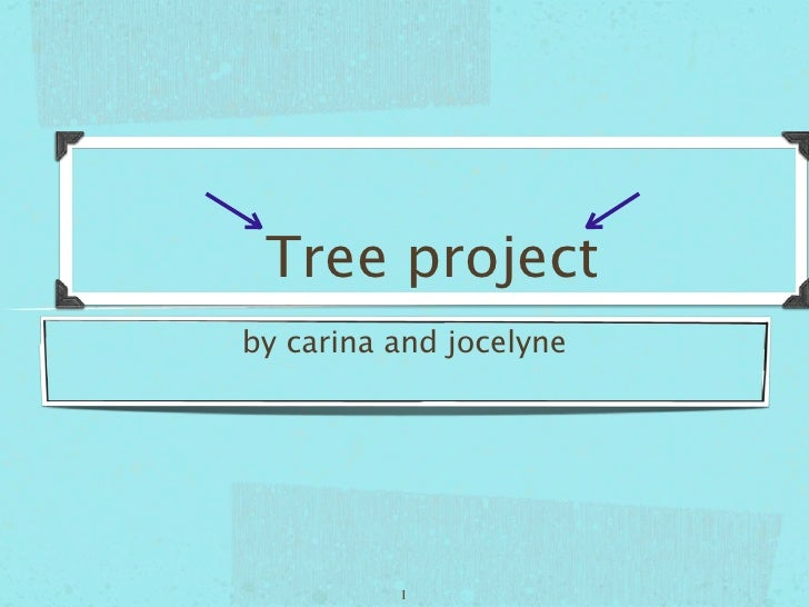 Tree project by carina and jocelyne               1