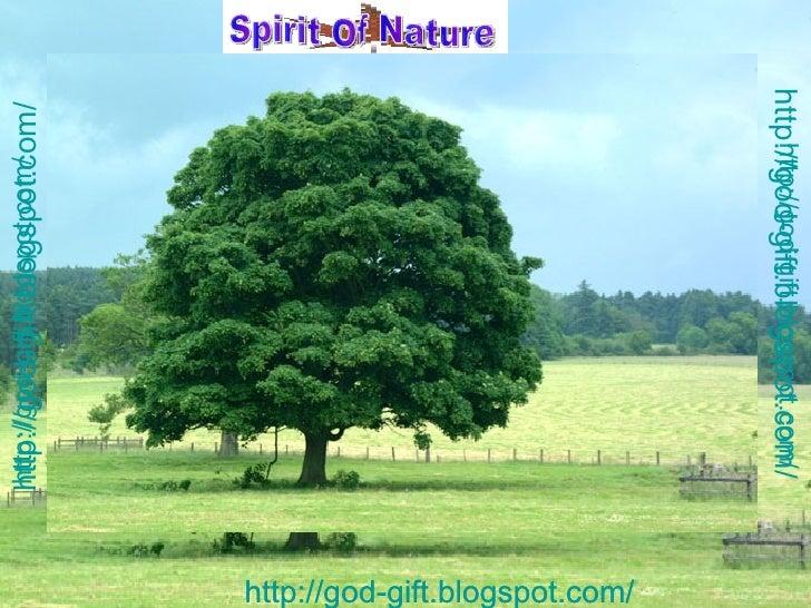 http://god-gift.blogspot.com/   http://god-gift.blogspot.com/   http://god-gift.blogspot.com/