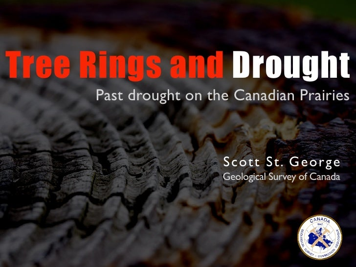 Tree Rings and Drought      Past drought on the Canadian Prairies                          S co tt St. Ge orge            ...