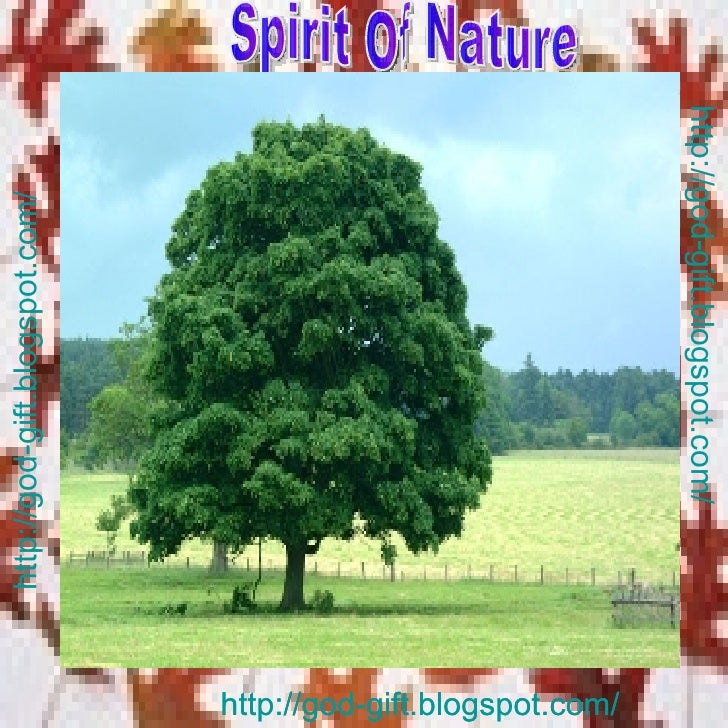 http://god-gift.blogspot.com/