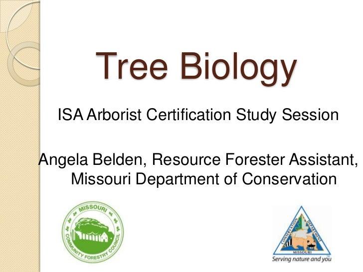 Tree Biology  ISA Arborist Certification Study SessionAngela Belden, Resource Forester Assistant,   Missouri Department of...