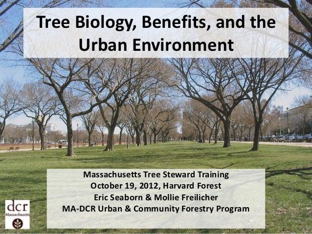 Tree Biology, Benefits, and the     Urban Environment       Massachusetts Tree Steward Training        October 19, 2012, H...