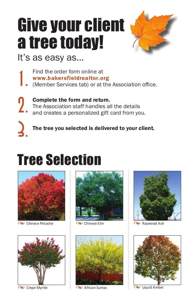 bakersfieldrealtor org Give a Tree Brochure 2013