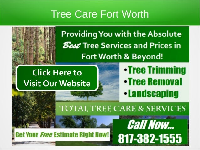Tree Care Fort Worth  Click Here toVisit Our Website