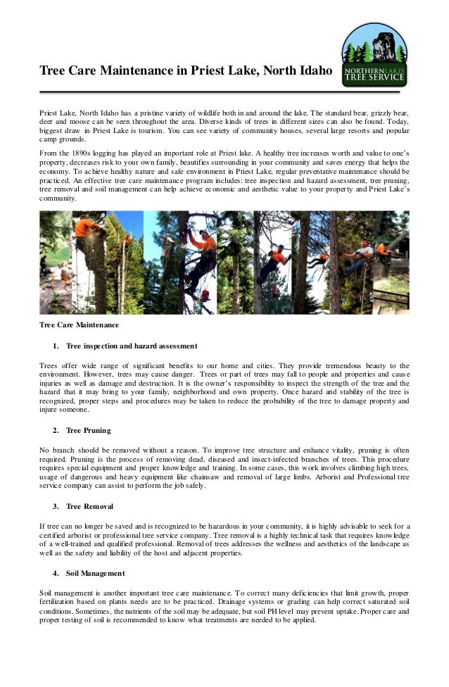 Tree Care Maintenance in Priest Lake, North Idaho Priest Lake, North Idaho has a pristine variety of wildlife both in and ...