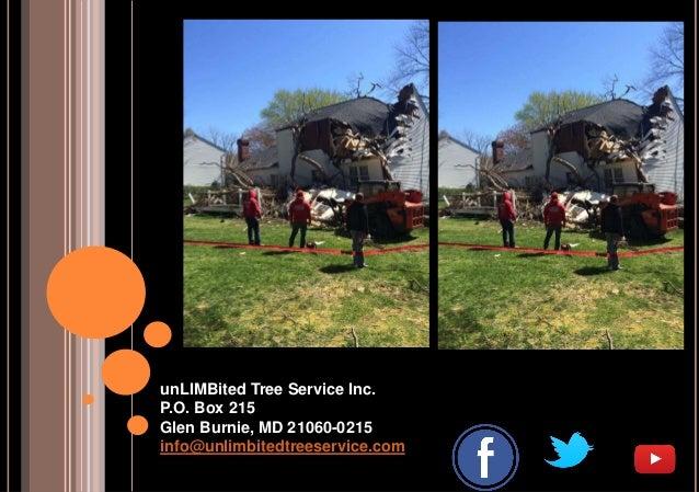 unLIMBited Tree Service Inc. P.O. Box 215 Glen Burnie, MD 21060-0215 info@unlimbitedtreeservice.com
