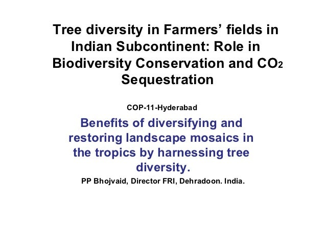 Tree diversity in Farmers' fields in   Indian Subcontinent: Role inBiodiversity Conservation and CO2           Sequestrati...