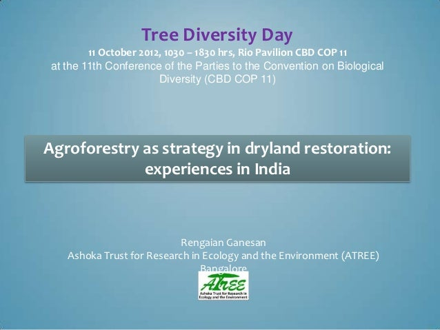 Tree Diversity Day        11 October 2012, 1030 – 1830 hrs, Rio Pavilion CBD COP 11at the 11th Conference of the Parties t...