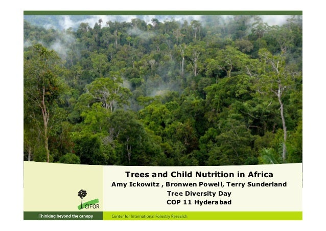Trees and Child Nutrition in AfricaAmy Ickowitz , Bronwen Powell, Terry Sunderland               Tree Diversity Day       ...