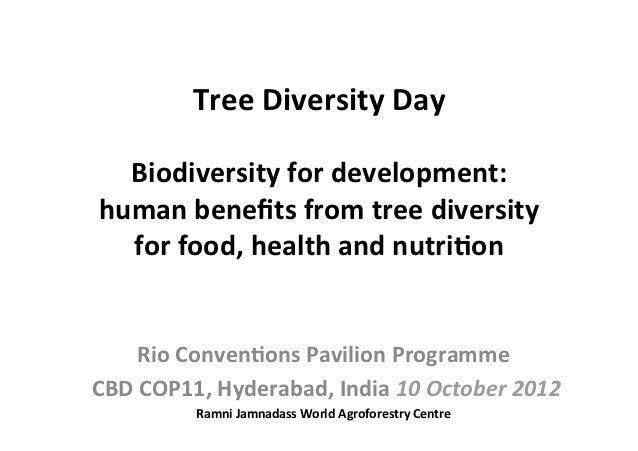 Tree Diversity Day                               Biodiversity for development:   human be...