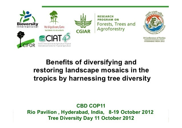 Benefits of diversifying and  restoring landscape mosaics in the  tropics by harnessing tree diversity                    ...