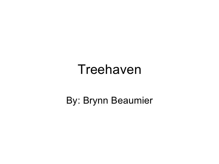 Treehaven By: Brynn Beaumier