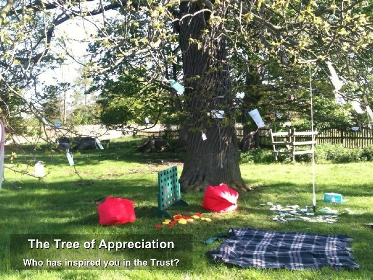The Tree of AppreciationWho has inspired you in the Trust?