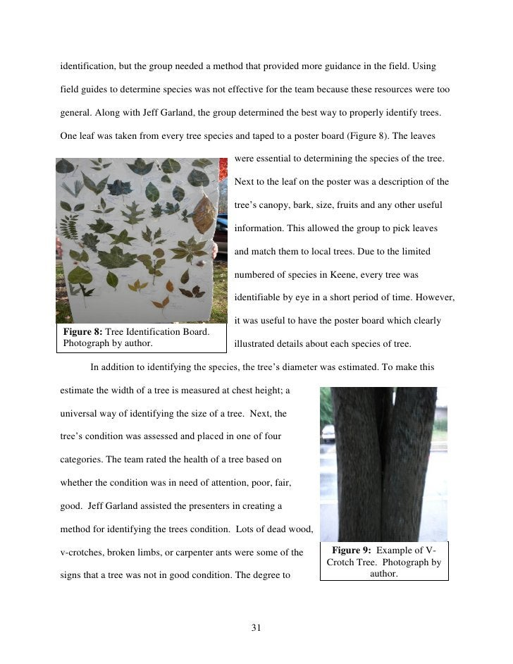 identification, but the group needed a method that provided more guidance in the field. Usingfield guides to determine spe...