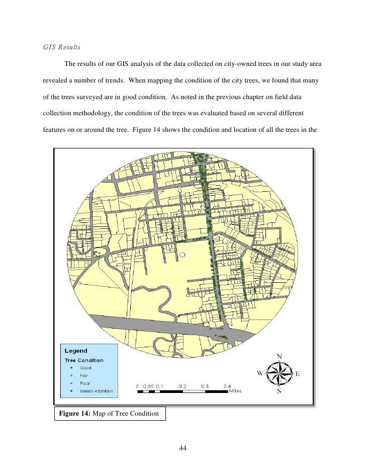 GIS Results       The results of our GIS analysis of the data collected on city-owned trees in our study arearevealed a nu...