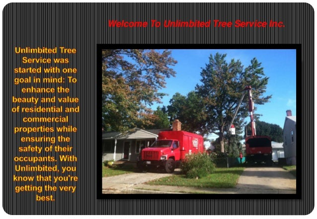 Welcome To Unlimbited Tree Service Inc.