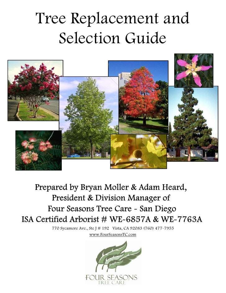 Tree Replacement and       Selection Guide         Prepared by Bryan Moller & Adam Heard,         President & Division Man...