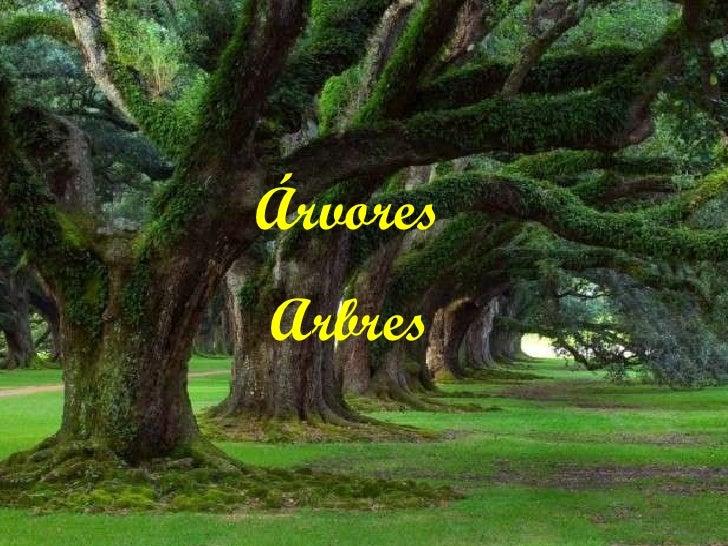 Árvores Arbres
