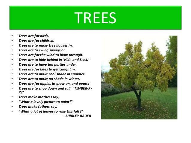 summary of poem trees
