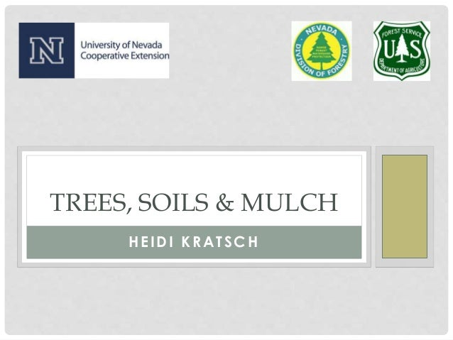 HEIDI KRATSCH TREES, SOILS & MULCH