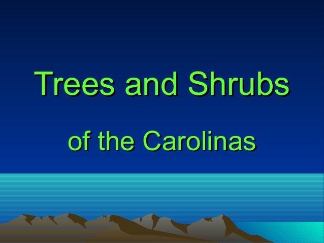 Trees and ShrubsTrees and Shrubs of the Carolinasof the Carolinas