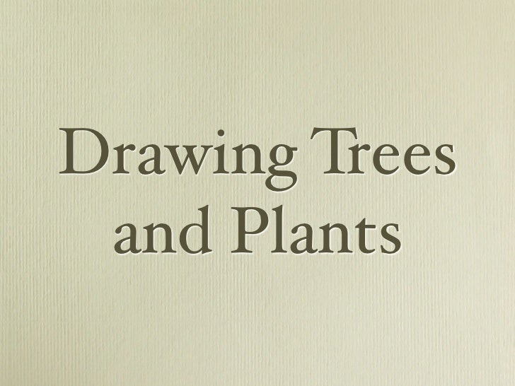 Drawing Trees  and Plants