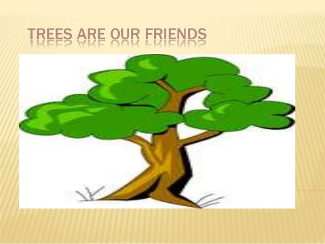Trees our friends